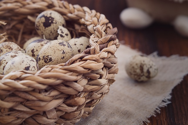 The Benefits and Harms of Quail Eggs